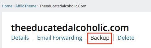 Affilotheme Backup Button