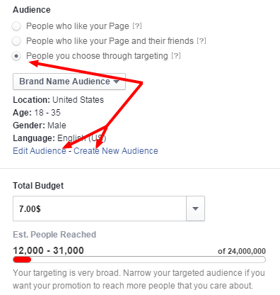 Edit Boost Audience