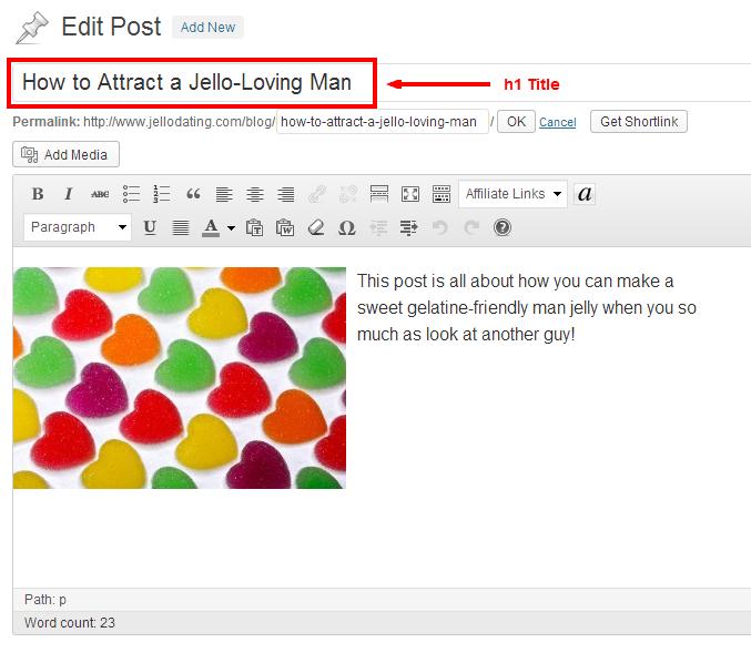 h1 tag in wordpress
