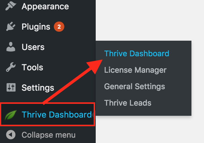 Thrive Leads - Affilotheme