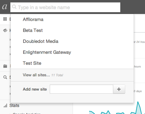 Type in a website name