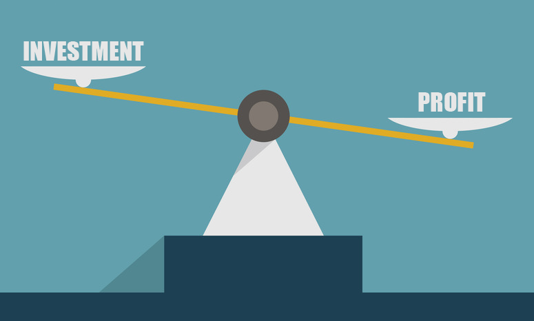 investment vs profit