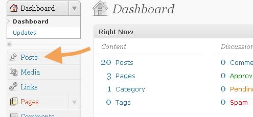 WordPress Posts