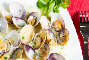 Niche of the Week: Paleo Diet Affiliate Programs