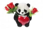 The Google Panda Legacy
